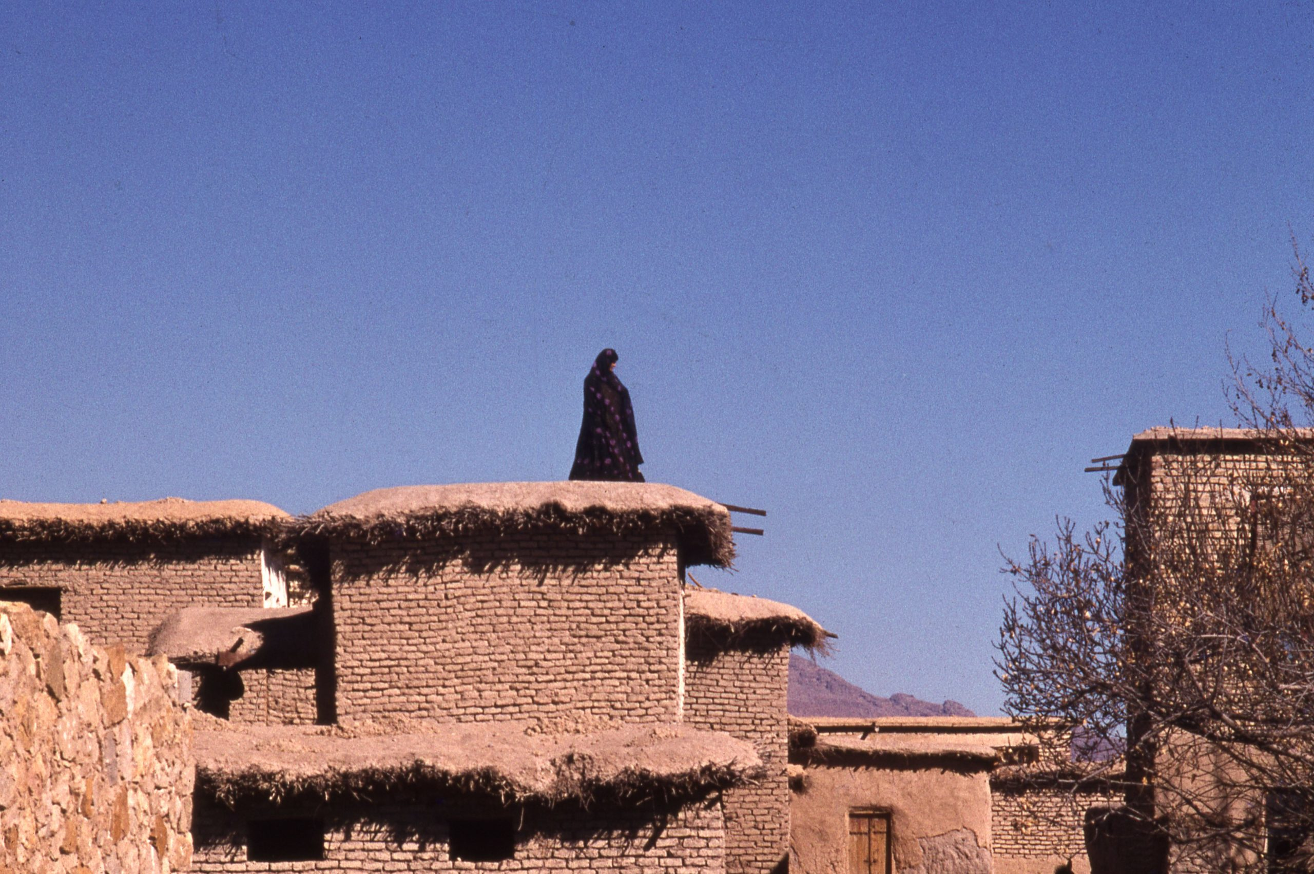 Woman on a Roof (1974)
